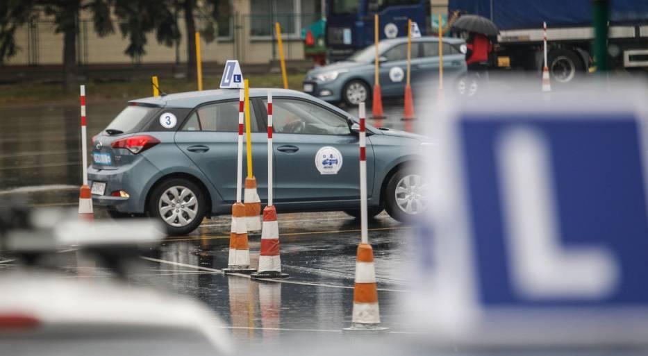 Prawo jazdy 2018, zmiany w przepisach, zielony listek