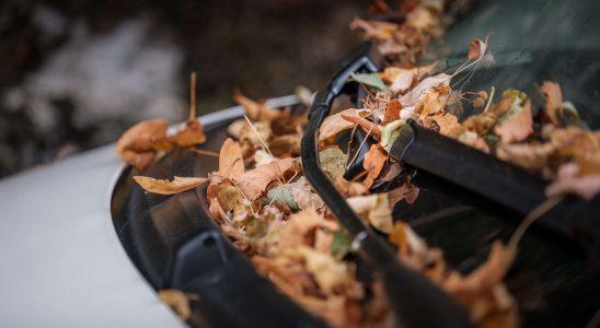 Jak przygotować samochód na jesień?